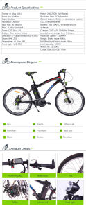 Classic Cheap Price Electric Mountain Bike pictures & photos