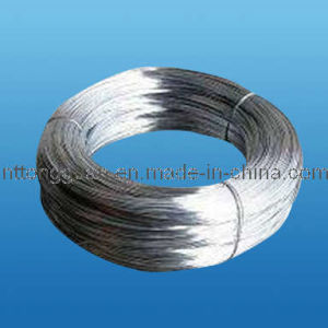 Electro Galvanized Steel Wire ISO9001: 2008 pictures & photos