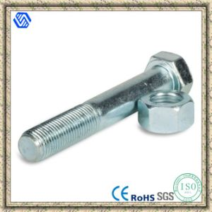 Hex Bolt Nut pictures & photos