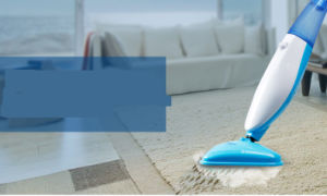 Clean Carpet Steam Mop Kb-Q1407 pictures & photos