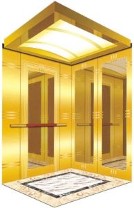 Passenger Elevator Without Machine Room (TKWJ-RLS101) pictures & photos