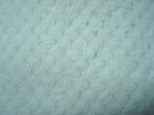 Single Fleece Knitting Fabric pictures & photos