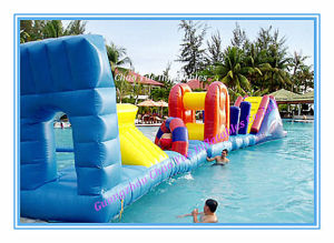 Inflatable Sport Games for Water Park (CY-M2102) pictures & photos
