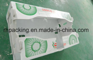 PP Corrugated Box, Plastic Carton, Coroplast Box Manufacturer/PP Fruit Box with Corona Treated Printing 3mm 4mm 5mm Instead of Cardboard Box pictures & photos