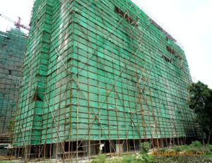 Green Plastic Nets Shade Nets for Agriculture and Constrution. pictures & photos