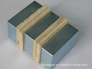 Strongest Sintered NdFeB Magnet for Motor (N50)