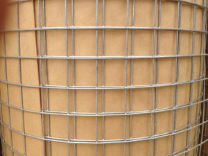 China Supplier Galvanized Construction Welded Wire Mesh pictures & photos