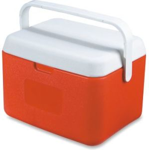 PP+PE Cooler Box