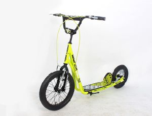 Steel Frame Kick Scooter (GL1612-A)