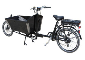 Dutchman Bike with Power Assist pictures & photos