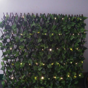 Battery Powered Green Wire Fence or Garden Use LED String Light pictures & photos
