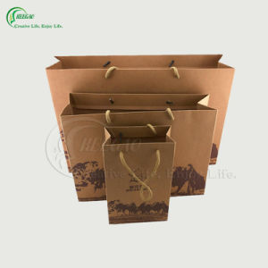 2017 High Quality Printing Paper Shopping Bag (KG-PB017)