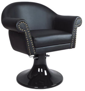 Topgrade Styling Chair for High-End Salons (A066023)