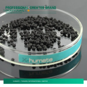 Humic Acid Pearl and Powder pictures & photos