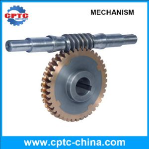 Worm Wheel and Worm, The Reducer Parts of Construction Elevator pictures & photos