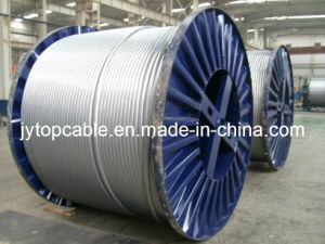 Galvanized Steel Wire Professional Manufacturer pictures & photos