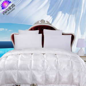All Season Chinese Pure Silk Duvet