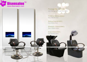 Styling Chair, Salon Chair, Barber Chair, Hairdressing Chair (Package NP1106)