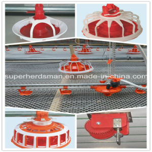 Chicken Tray Feeding Equipment for Poultry House
