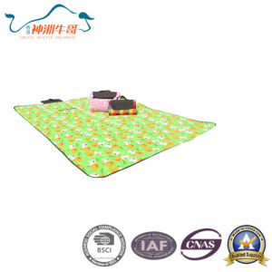 Fashion Fleece Outdoor Picnic Mat for Family