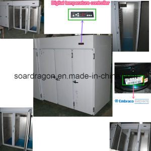 Customize Stainless Steel 3 Doors Refrigerator pictures & photos