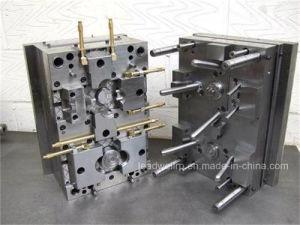 Precious OEM Injection Molding /Prototype / Plastic Auto Mould (LW-03678)