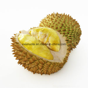 Pure Freeze Dried Free Sample Durian Juice Powder Extract