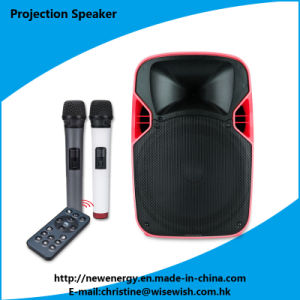 Professional Sound Speaker Box Audio PA Speaker - Projector