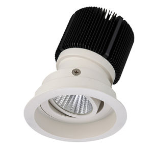 Villa Lighting Project 10W LED Downlight