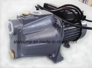 0.5HP Self-Priming Garden Pump for Small House