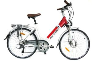Italian Manufacturer En15194 TUV 250W Electric Bicycle (TDF11Z)