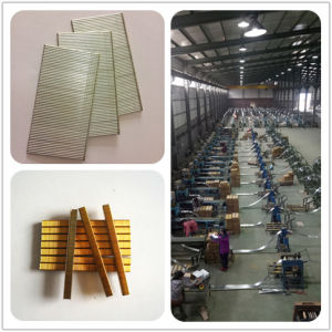 China Online Selling Furniture F Brad Nail Electro Galvanized F 30