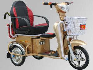 Disabled Electric Tricycles 350watt (HDGD350W-1)
