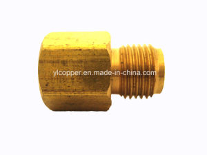 "Brass Screw for 5/16"" Fuel Line pictures & photos"
