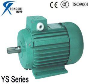 China Ys Electric Motor/Iec Standard Induction Motor (YS8012