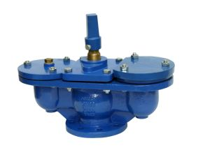 Air Release Valve with Inner Isolating Valve pictures & photos