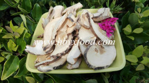 100% Natural Organic Tricholoma Matsutake Mushroom Slice From Hubei pictures & photos