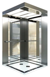 China Famous Brand Professional Home Elevator, Villa Elevator and Passenger Elevator