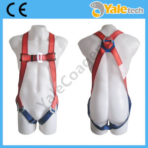 En361 Climbing Safety Belt Yl-S321 pictures & photos