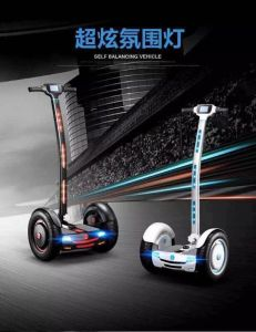 Fashionable Standing-up Self-Balancing Electric Vehicle with Remote Control