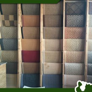 Sisal Carpet Outdoor Mats Car Rugs