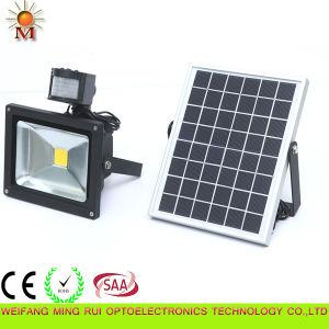 China 10w 30w Outdoor Solar Ed Led Sensor Flood Light Motion
