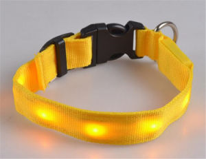 LED Flashing Pet Collor, Dog Tracking Collar, Single LED Light Collar pictures & photos