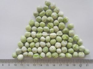 China Freeze Dried Lyophilized Green Peas Natural Dried
