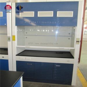 Steel Laboratory Chemical Fume Hood for Laboratory pictures & photos