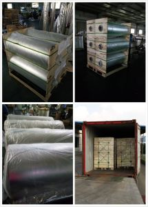 Aluminum Metallized CPP Heat Seal Packaging Film Rolls pictures & photos