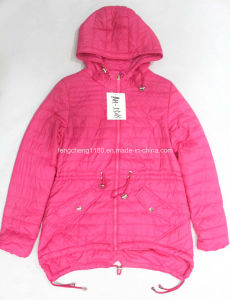 Women′s Spring/Autumn Fashion Jacket with Hoody