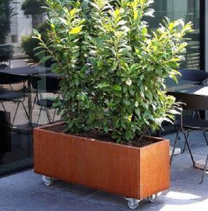 China Rectangular Corten Steel Planter Box With Casters China