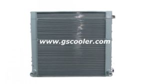 Excavator Heat Exchanger for Excavator Cooling System (B1002) pictures & photos