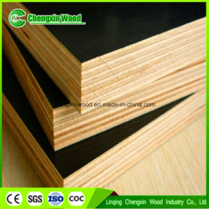 Building Material Poplar Brown Phenolic Film Faced Plywood
